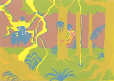 congo_cache-cache tropical