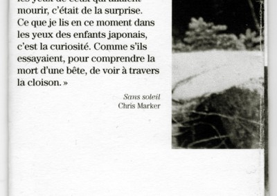 Chamois1