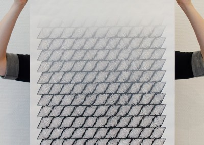 arnaud_parallelogramme_degrade